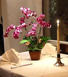 Ristorante Franca e Franco ist ein bisschen Italien am Rande der Stadt Stuttgart.